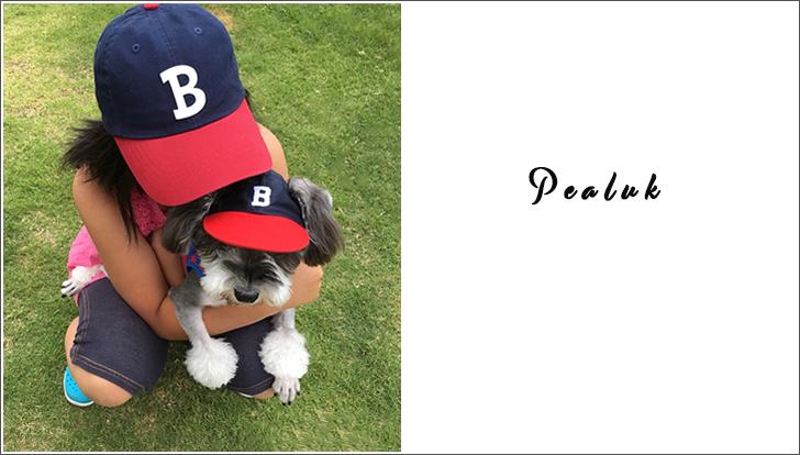 犬の帽子ペア