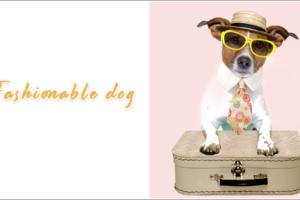 和花柄犬のネクタイ