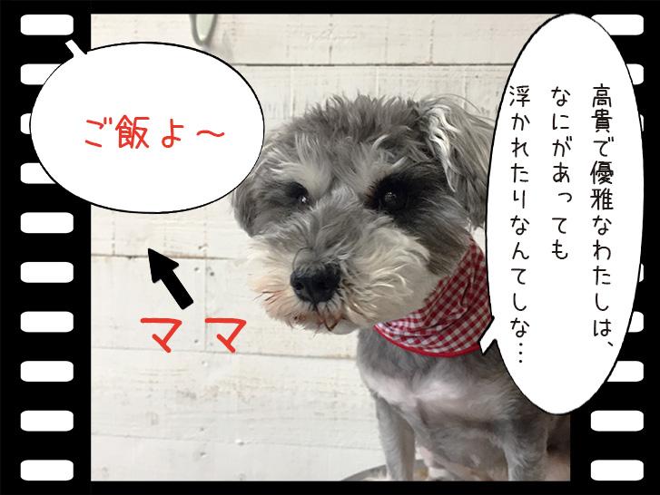 わんちゃんベル日記