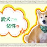 愛犬にも個性